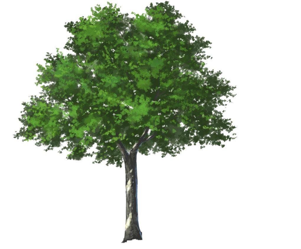 木の描き方を背景のプロが徹底解説!確実に上達する描き方とは ...
